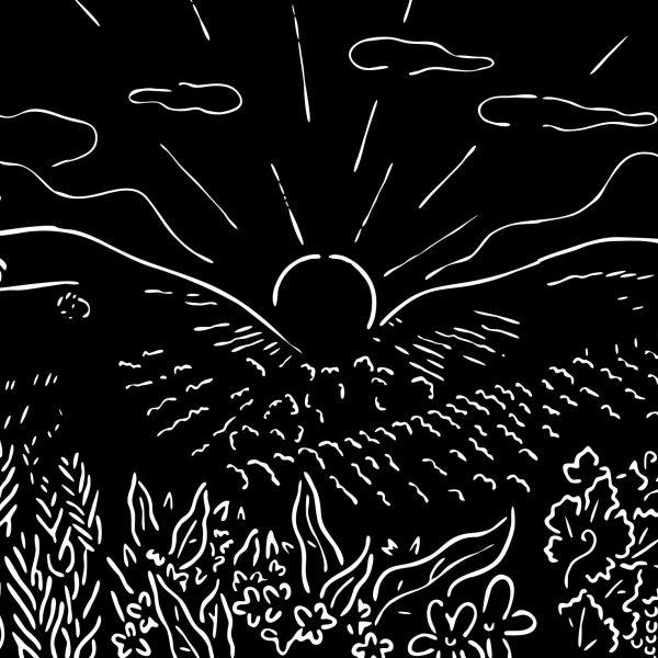 Crop illustration